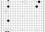 [삼성화재배 AI와 함께하는 바둑 해설] AI 정통 포진