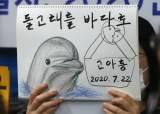 울산시민 울린 '고아롱'…남구청장 후보 공통공약 된 '돌고래'