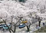 전국 낮 기온 20도 안팎 '봄 기운 물씬'…큰 일교차 주의