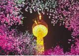 [대구로 오이소~] 이월드 83타워, 아쿠아리움 … 밤낮이 화려한 '컬러풀 대구'
