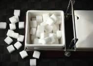 [더오래] 설탕세? 가당키나 한가