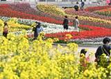 재보선날 아침 쌀쌀…맑은 하늘, 낮엔 서울 20도까지 올라