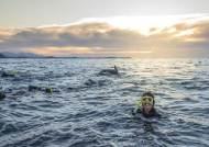 """""""호주와 트래블 버블""""…뉴질랜드관광청이 픽한 뉴질랜드 해안 절경"""