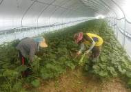 외국인 근로자 체류 1년 연장, 중기·농어촌 인력난 풀리려나