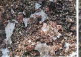 잘 썩어서 좋다···中 빗장에 '생분해 플라스틱' 생산 8배 급증