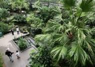 도심 한복판 거대한 숲…1천만명 다녀간 서울식물원 보니