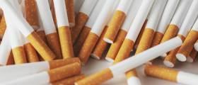 [앤츠랩]담배 안펴도 연5.5% 선방···배당주 대표 이 종목 치명적 약점