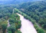 560년 지킨 절대보존림 광릉숲 체험 '광릉숲길' 인기[영상]
