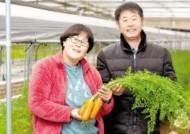 [국민의 기업] 스마트팜 자체 구축·운영 통해 20여 가지 친환경 채소와 과일 재배
