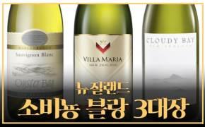 와인 몰라도 맛있다...'3대 소비뇽 블랑' 마셔보니