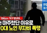 """기절할 때까지 짓밟히며 """"사람 살려""""…손주 보러온 노인 봉변"""