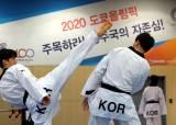 도쿄올림픽 선수단, 이번주부터 '화이자' 백신 접종 시작