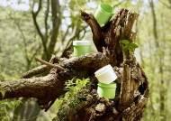 EPS, 생분해 가능한 '고기능성 내열 PLA 화장품 용기' 개발 성공
