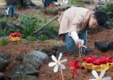 아이들에게 바쳐진 제주 북촌 카네이션…4·3 애기무덤의 아픔