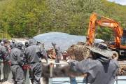 멧돼지 많아지는 봄···'돼지열병 방어선' 뚫려 7개월만에 재발