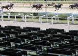 마사회장 '갑질'에 온라인 경마 추진 불똥…馬산업 빨간 불