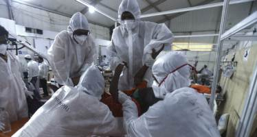 의료진 성폭행에 환자 숨졌다···코로나 병동 덮친 인도 성범죄