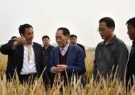 中하이브리드 쌀의 아버지 별세…시민들 거센 비 뚫고 애도