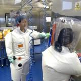[오병상의 코멘터리] '코로나 유출론' 저명과학자 논문발표