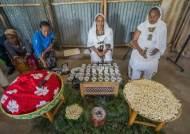 [더오래]커피에 식민의 아픔이…탄자니아 속 이디오피아 마을