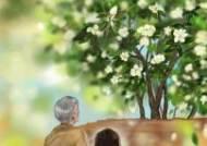 [더오래]어느 치매 노인의 '황홀한 시간'
