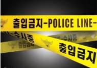 """""""감히 내 번호 지워?"""" 16세 연하 연인 흉기 살해한 30대女"""