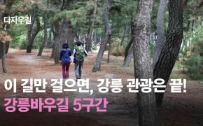 [영상] 이 길만 걸으면 강릉 관광 끝! 강릉바우길 5구간