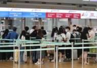 괌·사이판에 프랑스까지 열려… 해외여행 기대감 '폭발'