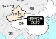 """中 신장 지역서 석유, 천연가스 10억톤 발견…""""지난 10년중 최대규모"""""""