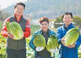 [issue&] 엄선한 100% 국산 농수산물로 영양 균형까지 생각한 다양한 김치 생산