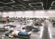 에어컨 필요없던 캐나다 50도 폭염, 1주새 719명 돌연사