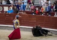 [이 시각] '피의 향연'은 계속될 것인가, 활기 되찾은 스페인 투우장