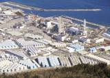 '방사성 벌꿀' 日후쿠시마 발칵…첫 기준치 초과 세슘 검출