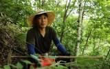 이혼 후 '자연인' 된 송종국, 해발 1000m 산속서 약초 캔다