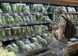 """""""8월에도 폭염"""" 타들어가는 과일·채소…추석 물가 잡아라"""
