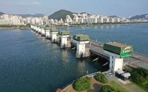 수문 연 낙동강 하구, 숭어 뛰었다…'생태계 복원' 하굿둑 개방 확대될까
