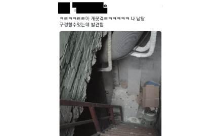 """""""남탕 몰카 SNS 유포, 아이 알몸까지""""…처벌촉구 국민청원 등장"""