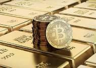 [B노트] 기관들이 디지털 금을 사모으기 시작했다