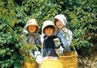 [경희대NGO대학원·본지 공동기획]21세기 대안의 삶을 찾아서② 일본 야마기시 마을