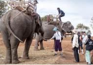 [Life&Culture] 아시안 코끼리, 이라와디 돌고래…환경보호와 지역발전 겨냥한 생태관광