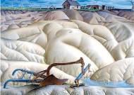버펄로 그래스 없앤 땅을 뒤덮은 모래 폭풍