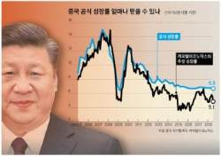 공식 수치로도 6.5%, 중국 성장률 비명