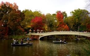 뉴요커가 사랑한 골목서 가을의 여유를 만끽하다