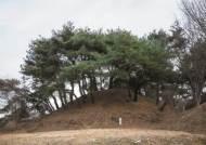 가야의 저력…'마지막 왕자'의 손자 김유신 삼국통일 이루다