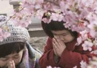 후쿠시마·팽목항, 그날의 아픔 영화로 다시 만나다