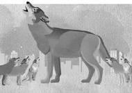 사냥 능력 탁월한 늑대들 떼 지어 '합창'하는 까닭