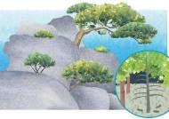 '천적' 피한 절벽의 소나무처럼, 새로운 생존능력 개발해야