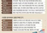 반려견 간식·장외주식·미술품 등 '틈새 공구'로 진화