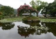 옛 정취를 느낄 수 있는 전통마을 3선… 안성 선비마을·거북이마을·사천마을