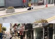 인천 아트플랫폼의 국외 입주작가 전시·공연